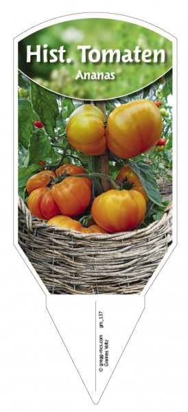 Tomate, historisch 'Ananas'
