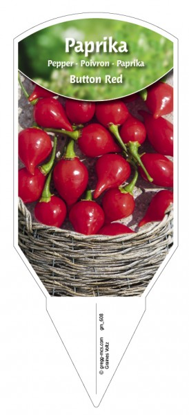 Paprika Button Red