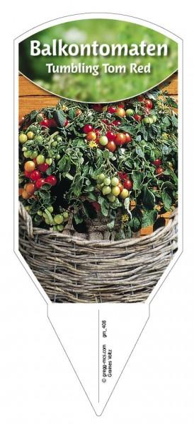 Tomaten, Balkon 'Tumbling Tom Red'