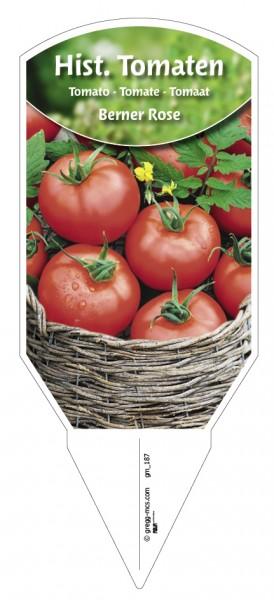 Tomaten, Historische 'Berner Rose'