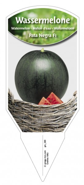 Wassermelone 'Pata Negra F1'