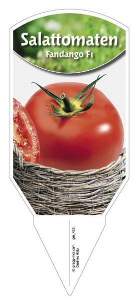 Salattomaten 'Fandango F1'