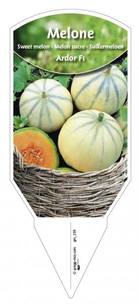 Melone 'Ardor F1'