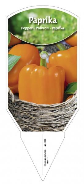 Paprika 'orange'