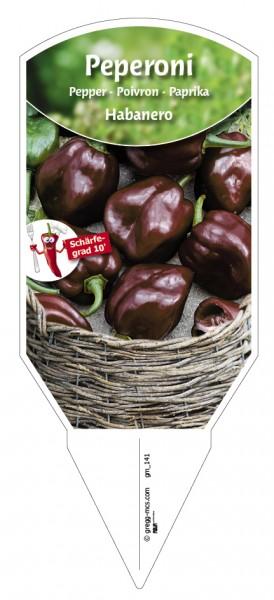Peperoni 'Habanero' braun