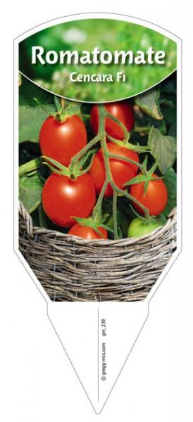 Tomaten, Roma- 'Cencara' F1