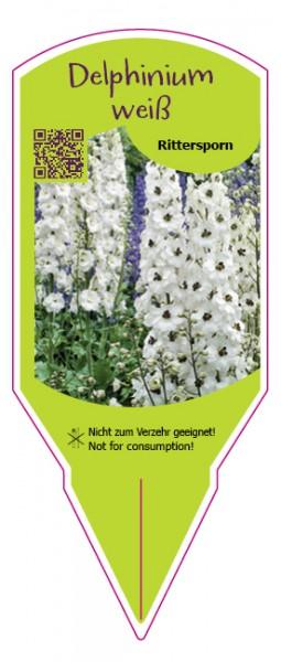 Delphinium weiß