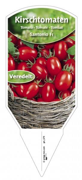 Tomaten, Kirsch- Santonio F1 veredelt