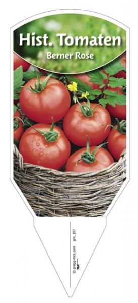 Tomate, Historische 'Berner Rose'