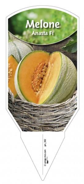 Melone 'Anasta F1'