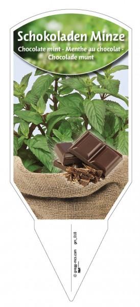 Minze Schokoladen