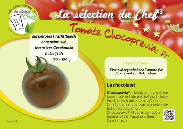 Mini-Poster 'Choco Previa F1'