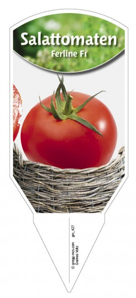 Salattomaten 'Ferline F1'