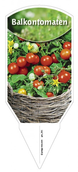 Tomaten, Balkon