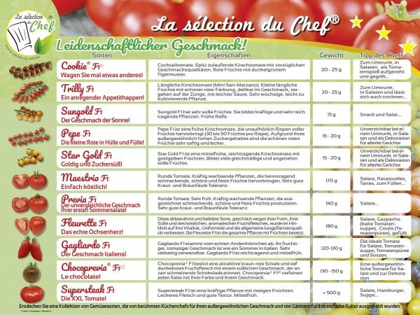 Tomaten Plakat