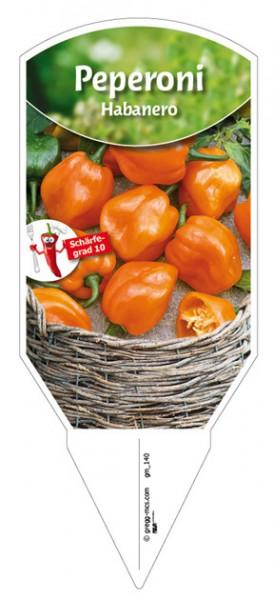 Peperoni 'Habanero' orange