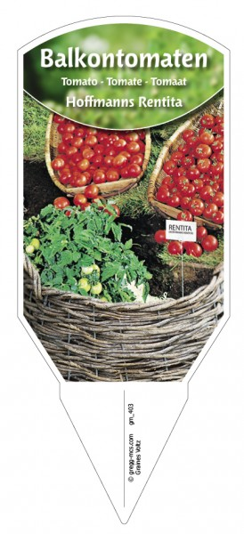 Tomaten, Balkon 'Hoffmanns Rentita'