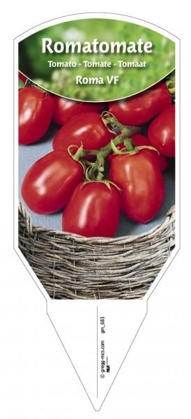 Tomaten, Roma- Roma VF