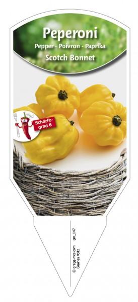 Peperoni 'Scotch Bonnet' gelb