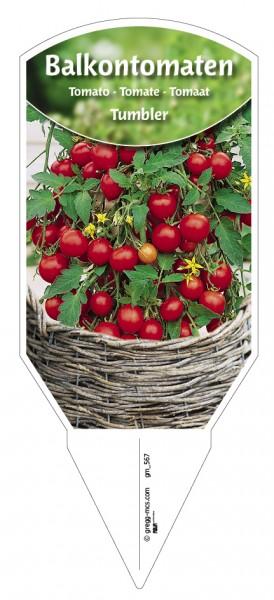 Tomaten, Balkon Tumbler