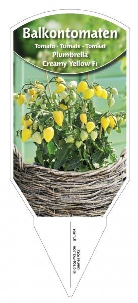 Tomaten, Balkon 'Plumbrella® Creamy Yellow F1'