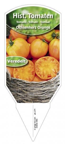 Tomaten, Historische Ochsenherz Orange veredelt