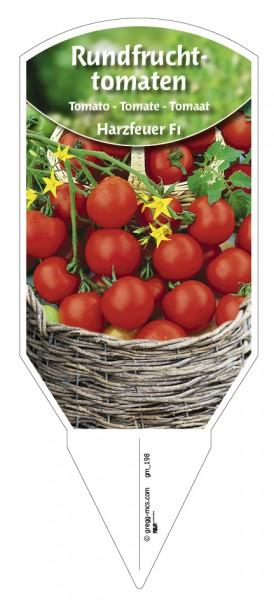 Tomaten, Rundfrucht- 'Harzfeuer' F1