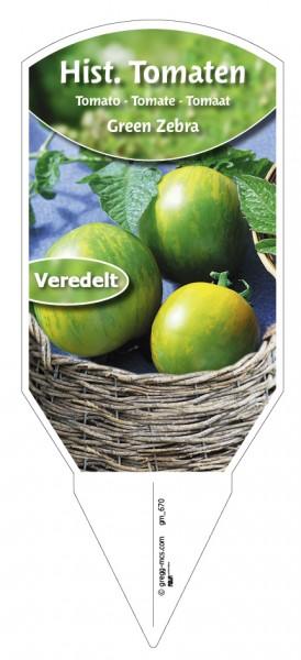 Tomaten, Historische Green Zebra veredelt