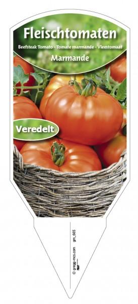 Tomaten, Fleisch Marmande veredelt