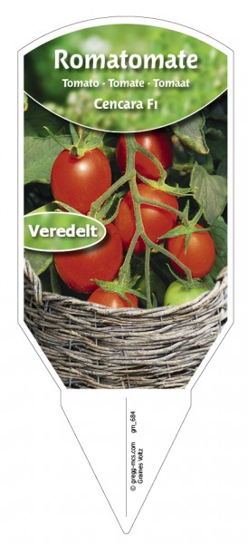 Tomaten, Roma- Cencara F1 veredelt