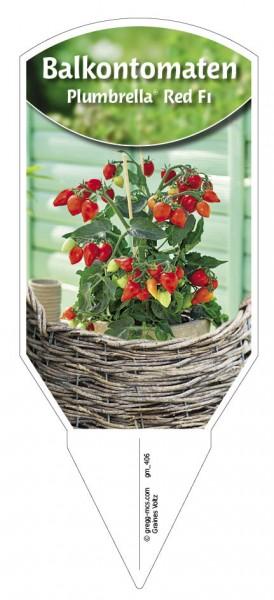 Balkontomaten 'Plumbrella® Red F1'