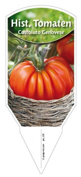 Tomaten, Historische 'Costoluto Genovese'