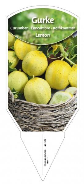 Gurke Lemon