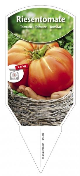 Tomaten, Riesen- 'Gigantomo'