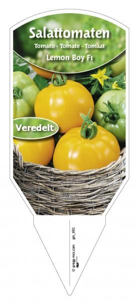 Tomaten, Salat- Lemon Boy F1 veredelt