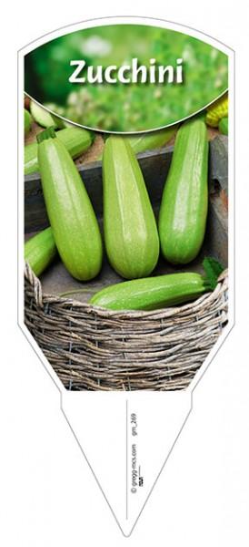 "Zucchini ""hellgrün"""