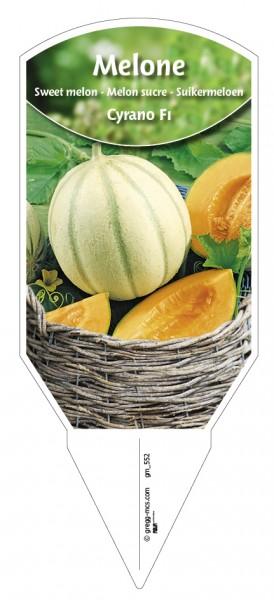 Melone 'Cyrano' F1