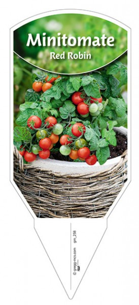 Tomaten, Mini- 'Red Robin'