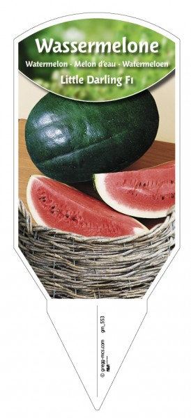 Wassermelone Little Darling F1
