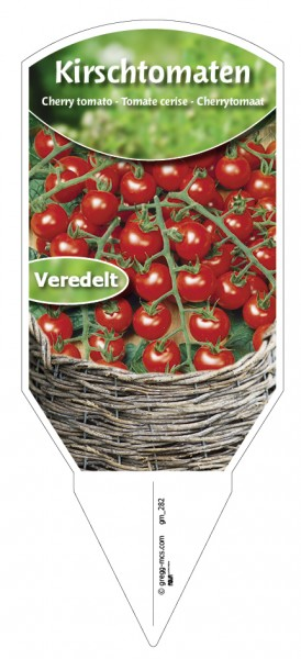 Tomaten, Kirsch-, veredelt