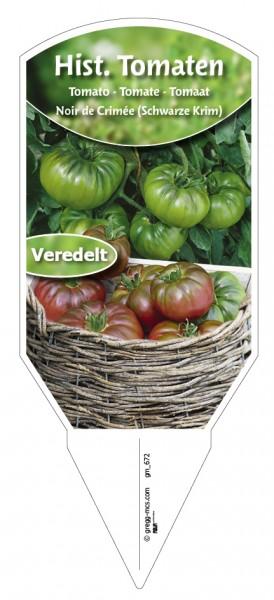 Tomaten, Historische Noir de Crimée (Schwarze Krim) veredelt