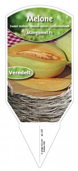 Melone Mangomel F1 veredelt