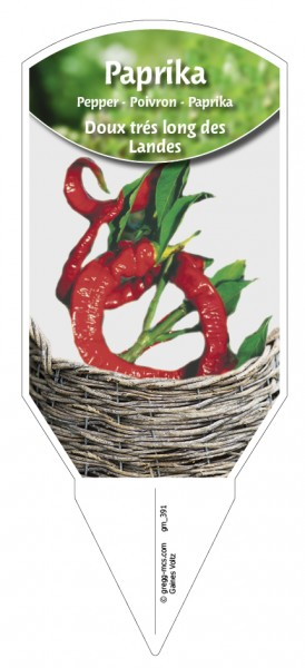Paprika 'Doux trés long des Landes'