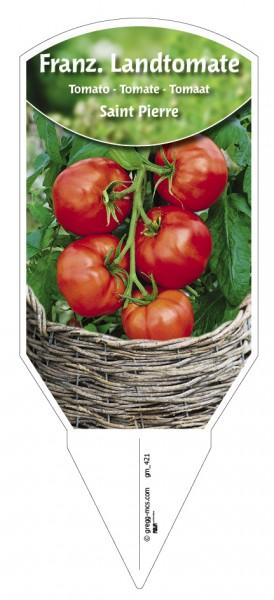Tomaten, Land- Französiche 'Saint Pierre'