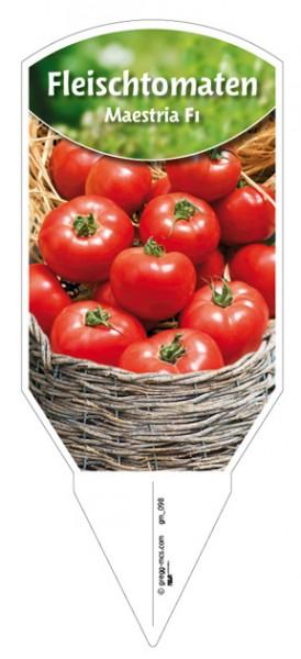"""Tomaten, Fleisch """"Maestria F1"""""""