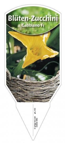 Blüten-Zucchini 'Gabbiano F1'