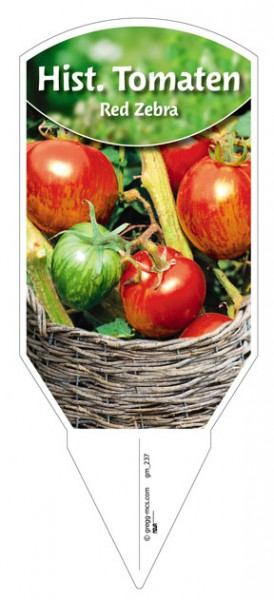Tomaten, Historische 'Red Zebra'