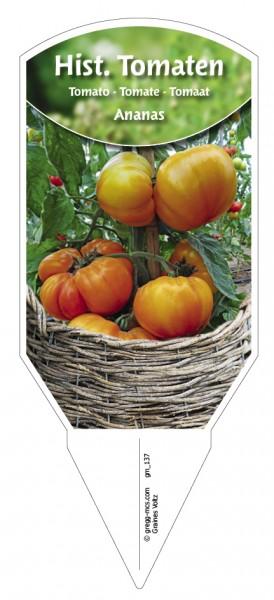Tomaten, Historische 'Ananas'