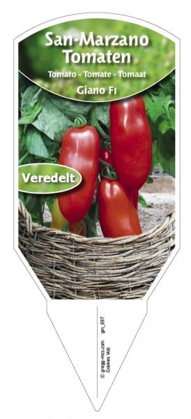 Tomaten, San-Marzano 'Giano F1' veredelt