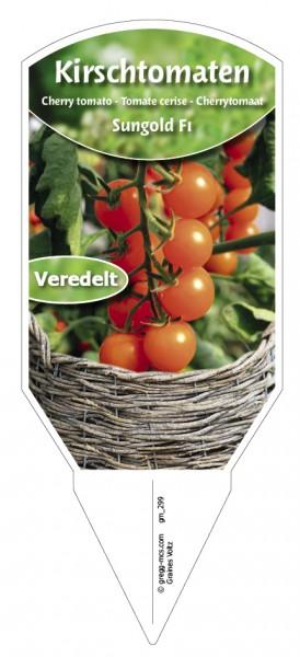 Tomaten, Kirsch- 'Sungold F1' veredelt